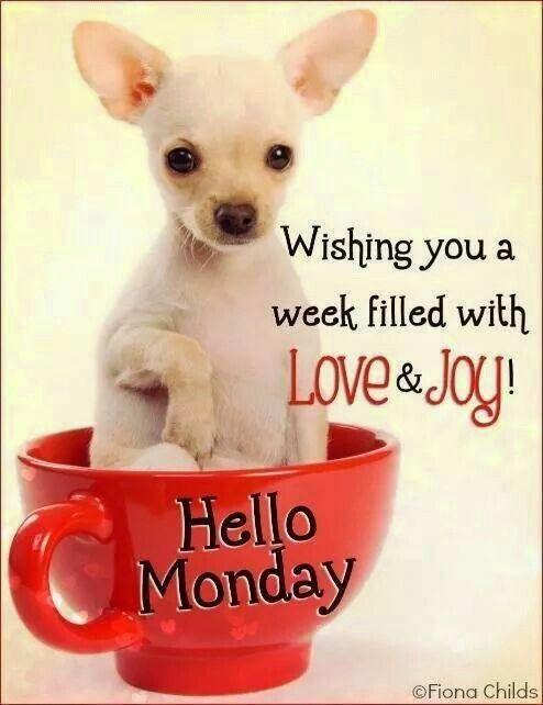 Hello Monday!: