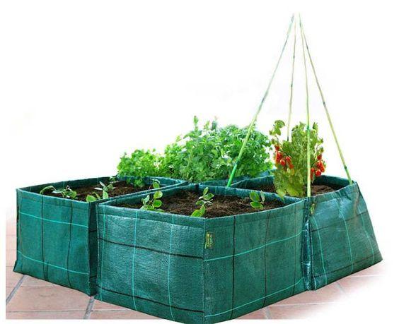 Cultivar el Huerto Casero.: Crea un Huerto en casa y disfruta.
