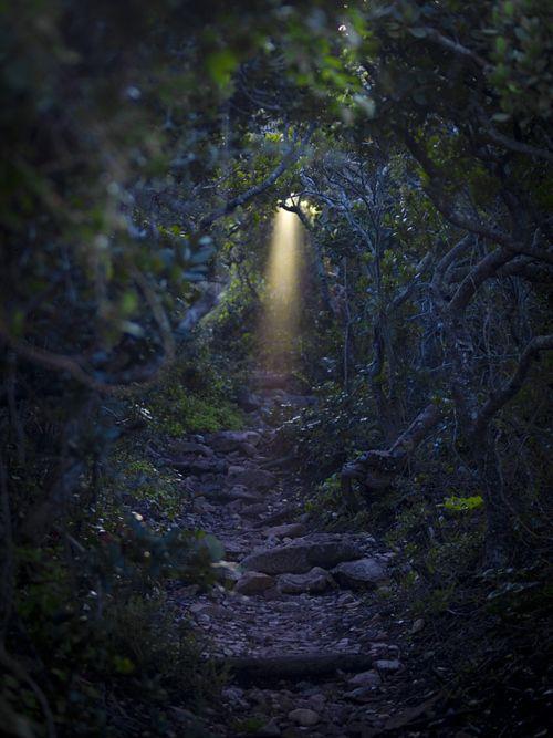 fairy flashlight