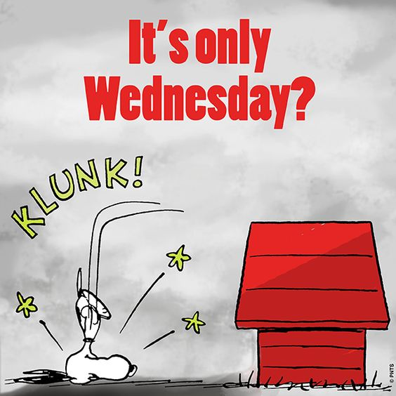 It's only Wednesday?!:
