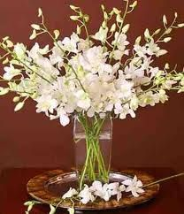 Dendrobium Orchids make for great DIY wedding flowers. They are easy to care for, easy to arrange and produce fantastic results when simply arranged in a clear glass vase!