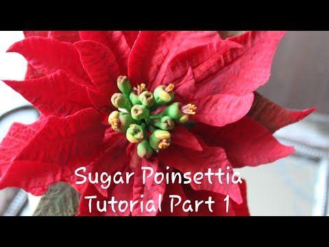 How To Make A Sugar Poinsettia Flower Tutorial Part 1 Youtube Flower Tutorial Poinsettia Flower Poinsettia