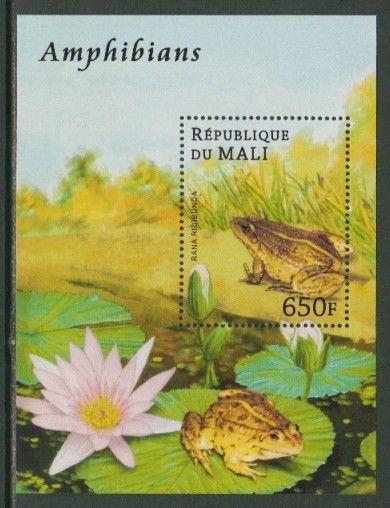 Frog Amphibians MNH S/S stamp FROG01