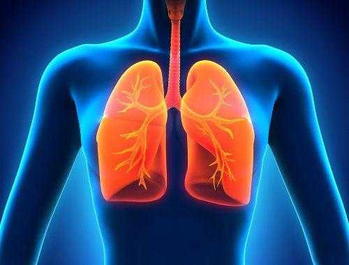 Des Aliments Bénéfiques Pour Vos Poumons Aliments Benefiques Poumons Remèdesnaturels Clean Lungs Healthy Lungs Lunges