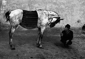 Josef Koudelka, a great photographer of Rumanian gypsies. The book 'Gypsies' is stunning...: