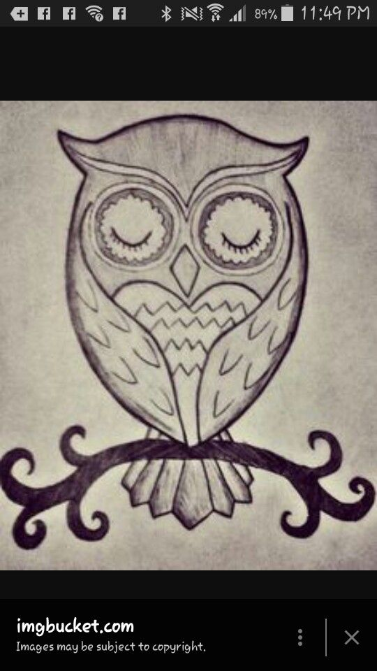 easy to draw cute owl and to draw on pinterest