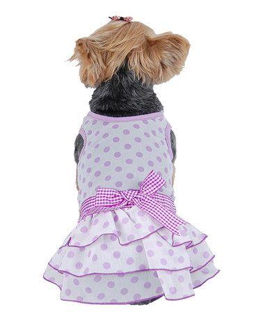 Another great find on #zulily! Purple Polka Dot Chiffon Dog Dress by Anima #zulilyfinds
