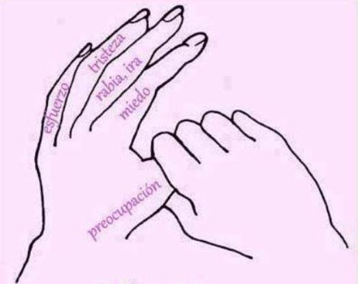 *Técnica japonesa para equilibrar y calmar el cuerpo en poco tiempo.* Basta con sujetar cada dedo durante unos minutos….mano izquierda en la noche…mano derecha por la mañana Con 5 o 10 minutos es suficiente, pero todo depende de como te encuentres, a veces puedes sentir que con 2 o 3 minutos ya estás mejor. ELIMINAR EL ESTRES Y RECUPERAR EL EQUILIBRIO PERDIDO Para tratamiento: Sujeta un dedo a la vez con la mano contraria hasta que sientas que el latido se ...: