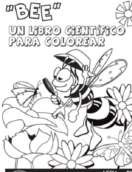 Did You Know You Can Download A Spanish Version Of The Bee A Scientist Coloring Book Coloring Books Education Journals Middle School Science
