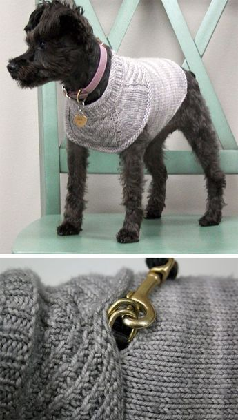 """Free knitting pattern for Harness-friendly dog sweater - This sweater is designed to look sleek with or without a harness. There is a hole hidden by the cowl for a harness. Sizes: To fit dogs with a girth of 15"""" (18"""" 22"""", 26"""", 30""""). Designed by Jacqueline Cieslak of The Stitch Between"""