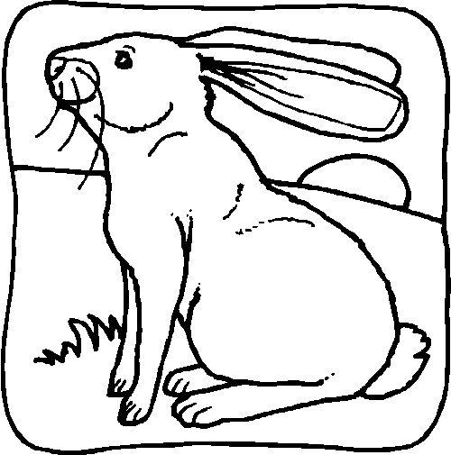 ภาพระบายส ส ตว ต าง ๆ พฤต กรรมเด ก วงโยธวาท ต ไอเด ยงานว นเก ด