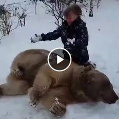 Esse Urso esta curtindo o momento.