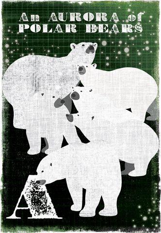 Another lovely collective noun print - an Aurora of Polar Bears