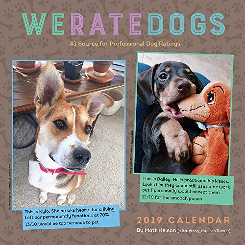 Pin By Lauren Miller On Gifts For People We Rate Dogs Dog