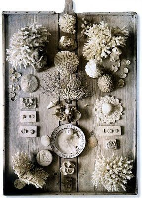pale shells + coral #housebeautiful #dreamlivingroom
