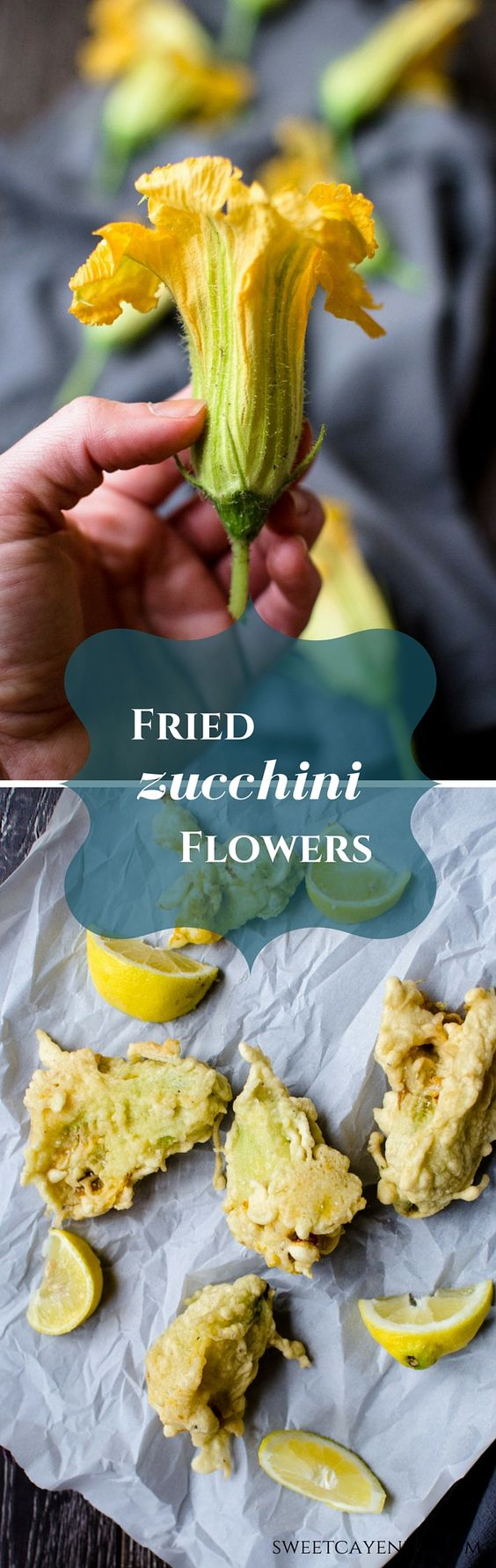 Zucchini Flowers Are Lightly Breaded And Fried In This Favorite Appetizer  Recipe From Italy Make It For Your Next Summer Party!