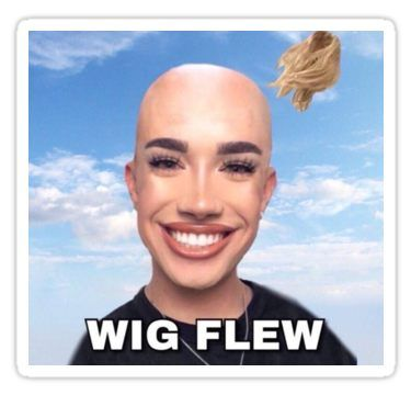 James Charles Wig Flew Sticker Really Funny Memes Charles Meme Stupid Funny Memes