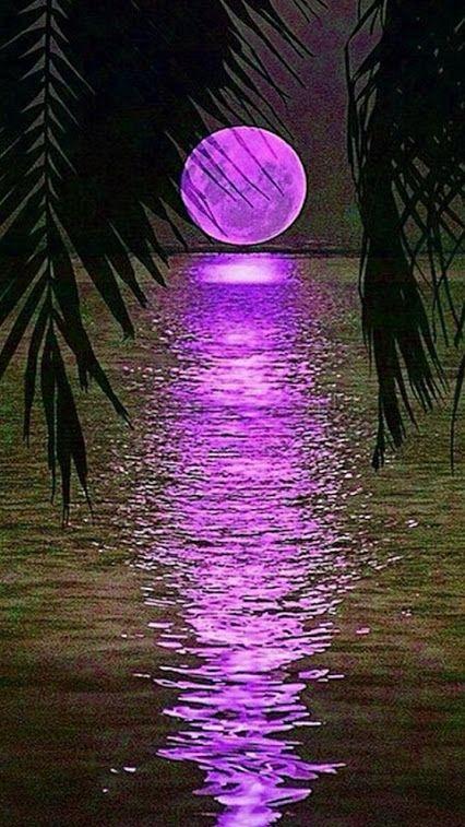 bonzour bonne zournée et bonne nuit notre ti nid za nous - Page 2 B90349a09d3483dc01ed93e6b836b450