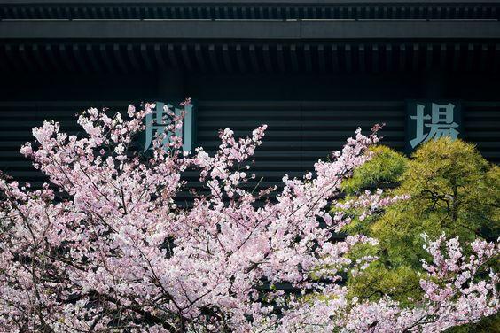 National Theatre of Japan (国立劇場). / Architect : Hiroyuki Iwamoto (設計:岩本博行).