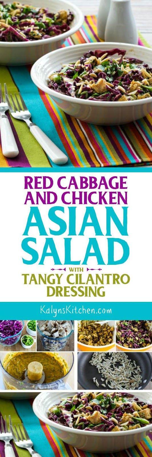 ... tangy cilantro mint chimichurri asian chicken salad asian cabbage