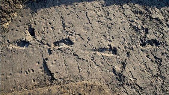 Encuentras grandes huellas grandes de un homínido prehistórico - https://infouno.cl/encuentras-grandes-huellas-grandes-de-un-hominido-prehistorico/