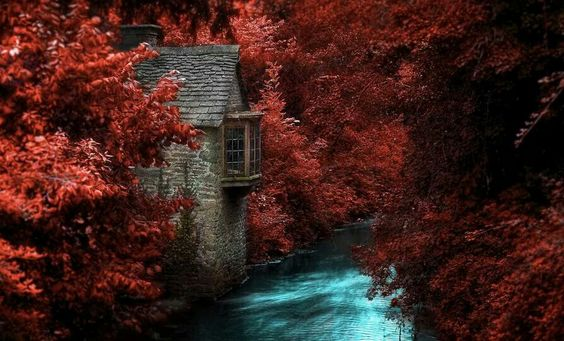 House by river