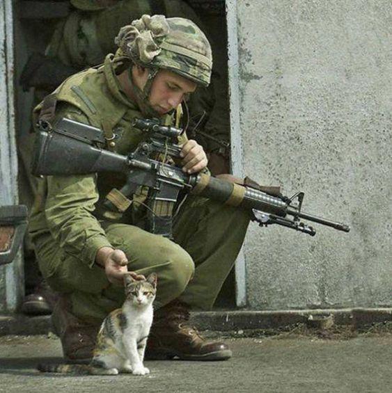 軍人と野良猫)