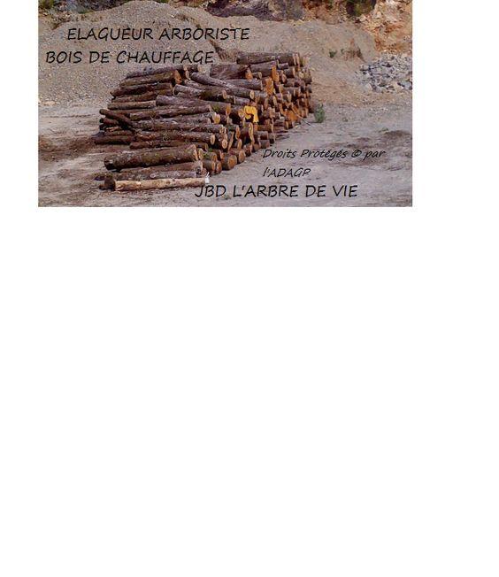 ELAGUEUR JBD L'arbre de vie de Chasteaux (19600) se déplace en Limousin - DEVIS GRATUIT         : Bois de chauffage