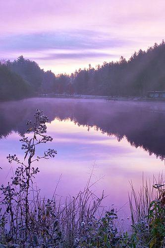 Resultado de imagen de cielo malva en el estanque