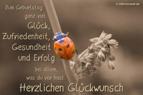 Pin Von Alfred Schmidt Auf Spruche In 2020 Alles Gute Geburtstag