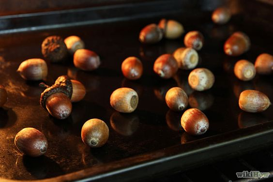 Crafts the gruffalo and counting activities on pinterest for How to preserve acorns for crafts
