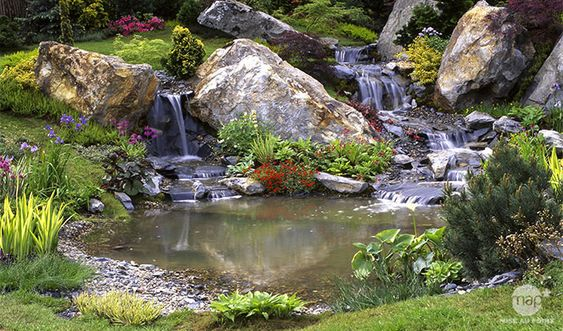 Aménagement du bassin de jardin