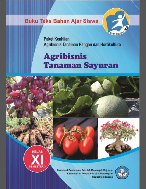 Buku Smk Agribisnis Tanaman Sayuran 3 Kelas 11 Kurikulum 2013 Buku Sayuran Tanaman