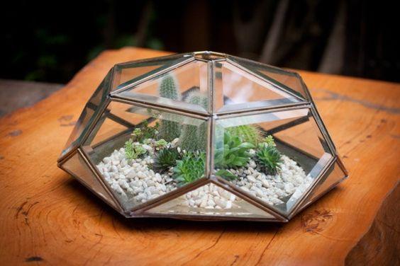 Light fixture terrarium