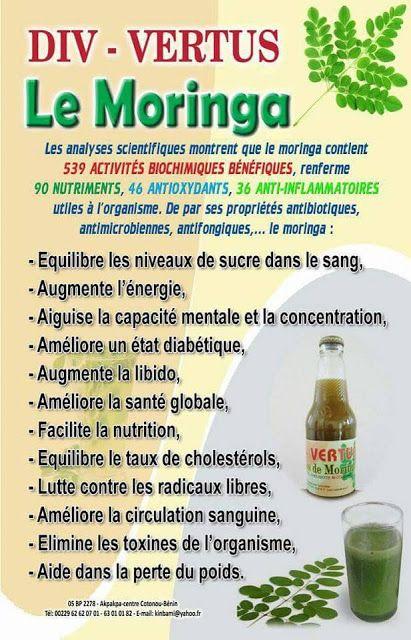 Comment Consommer Le Moringa : comment, consommer, moringa, Beaute, Sante:, POURQUOI, CONSOMMER, MORINGA, Santé,, Moringa, Bienfaits,, Alimentation, Santé