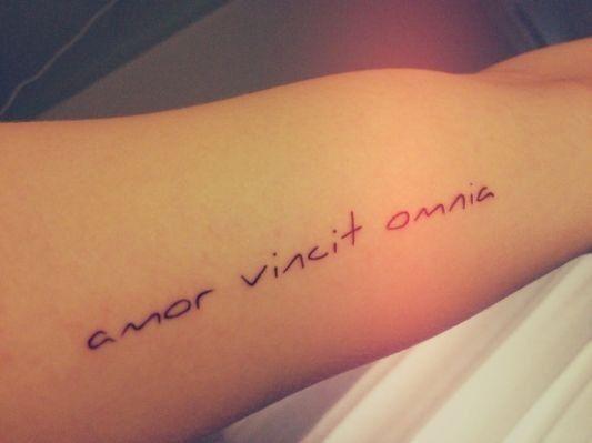 Amor Vincit Omnia Tattoo Amor Tattoos Tattoo Fonts