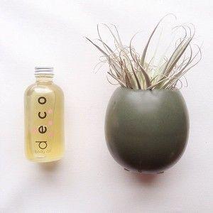 tuesday pick-me-ups: vanilla + rose body oil x pretty plants
