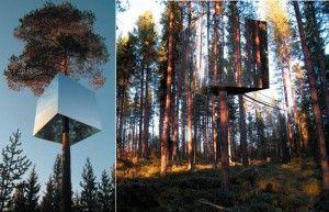 Amazing tree house in Sweden