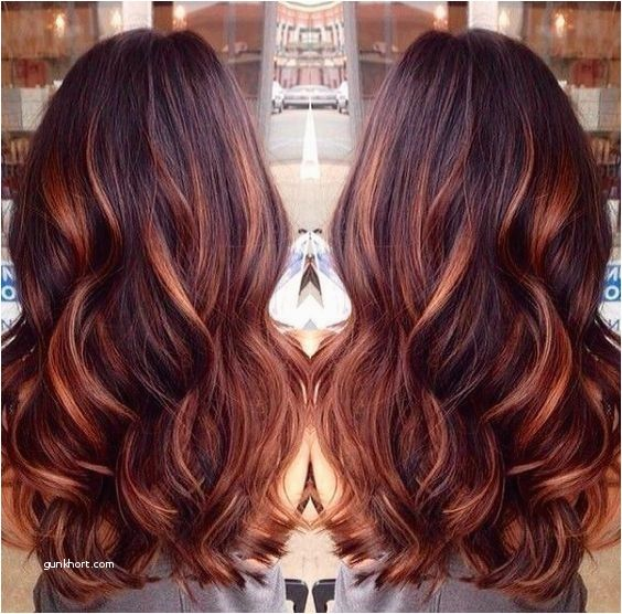 Image Result For Copper Blonde Highlights On Black Hair Hair Styles Long Hair Styles Cool Hair Color