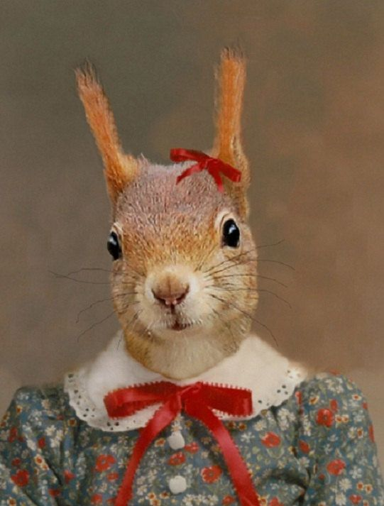 Stephanie Squirrel-8 X 10 Art Print
