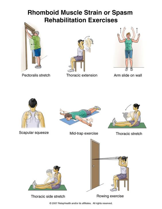 Mid Back Pain Rehabilitation Exercises | Car Accident Doctor