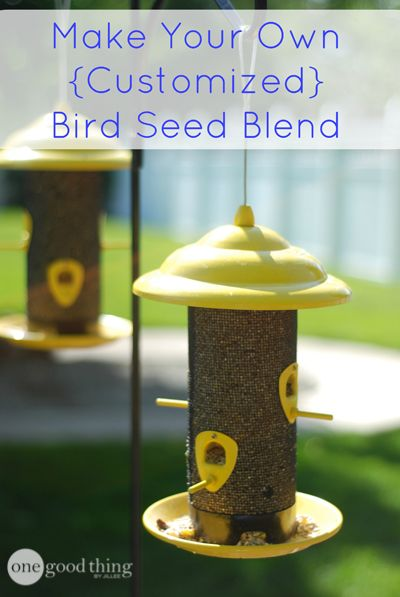 How To Make Your Own Customized Bird Seed Blend Most