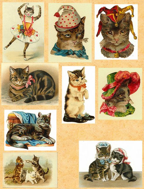 Vintage Cats: