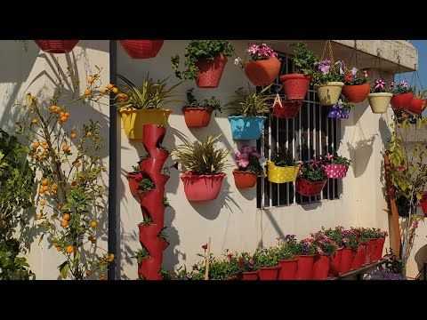 Winter Flowering Plants With Names Fun Gardening Youtube In 2020 Planting Flowers Amazing Gardens Plants