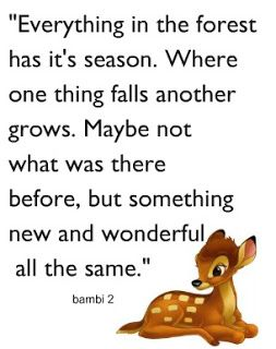 Disney quote....this is pretty much life. when one thing ends...another thing begins and grows from it, the good and the bad.