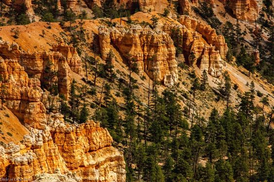 Bryce Canyon National Park by Dale Hibler - Photo 149551803 - 500px