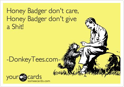 Honey Badger don't care, Honey Badger don't give a Shit! from DonkeyTees.com