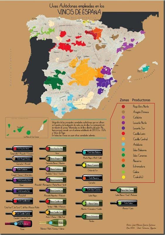 Vinos de España por Variedades Autóctonas #infographic #infografía
