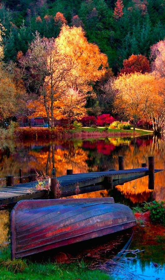 Vibrant autumn scene at Loch Ard in the Stirling District of Scotland • photo: Unique Landscape on Getty Images: