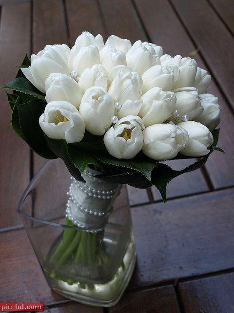 صور بوكيه ورد صور بوكيهات ورد جميلة اجمل صور بوكيه ورود Tulip Bridal Bouquet White Wedding Bouquets Bridal Bouquet